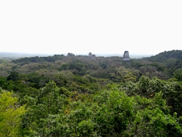 Tikal Ruins: Views from Temple 6